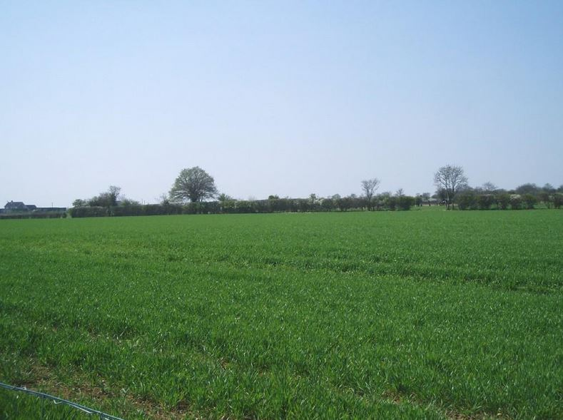 Private Properties To Rent St Neots
